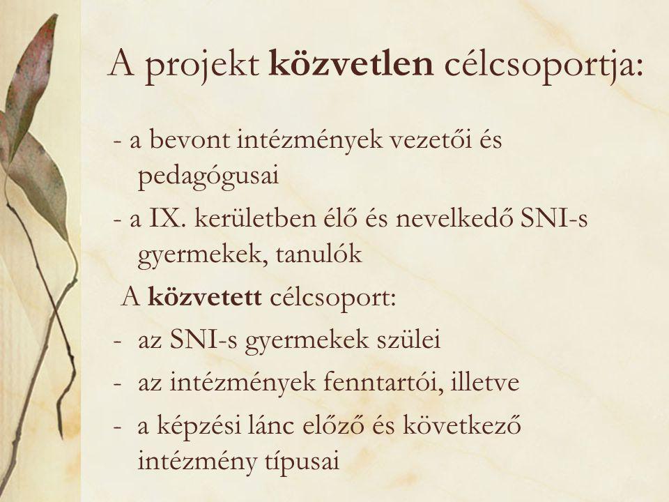 A projekt közvetlen célcsoportja: - a bevont intézmények vezetői és pedagógusai - a IX.