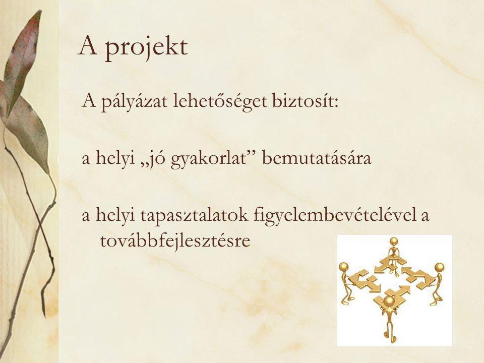"""A projekt A pályázat lehetőséget biztosít: a helyi """"jó gyakorlat bemutatására a helyi tapasztalatok figyelembevételével a továbbfejlesztésre"""