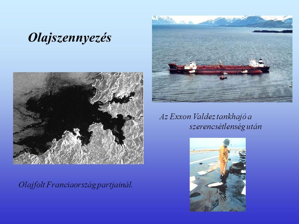 Olajszennyezés Az Exxon Valdez tankhajó a szerencsétlenség után Olajfolt Franciaország partjainál.