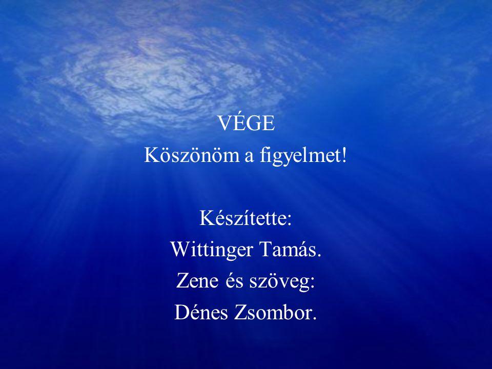 VÉGE Köszönöm a figyelmet! Készítette: Wittinger Tamás. Zene és szöveg: Dénes Zsombor.