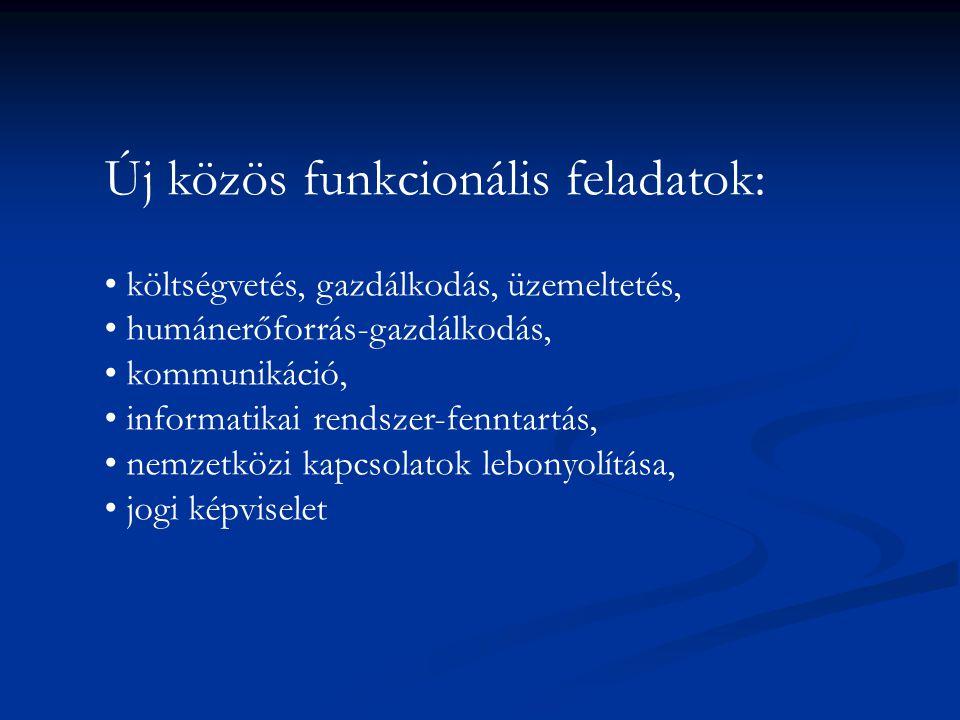 Új közös funkcionális feladatok: költségvetés, gazdálkodás, üzemeltetés, humánerőforrás-gazdálkodás, kommunikáció, informatikai rendszer-fenntartás, n