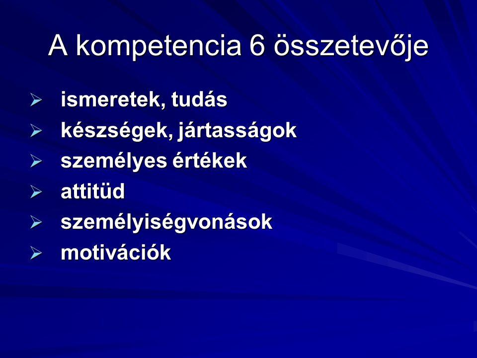 A pályázó A Vas Megye Önkormányzata mint intézményfenntartó 104.855.081 Ft támogatást nyert el a projekt megvalósítására, amelyből iskolánk a pályázat keretében az Európai Szociális Alap és a Magyar Köztársaság társfinanszírozásában 14.105.725 Ft támogatásban részesül.