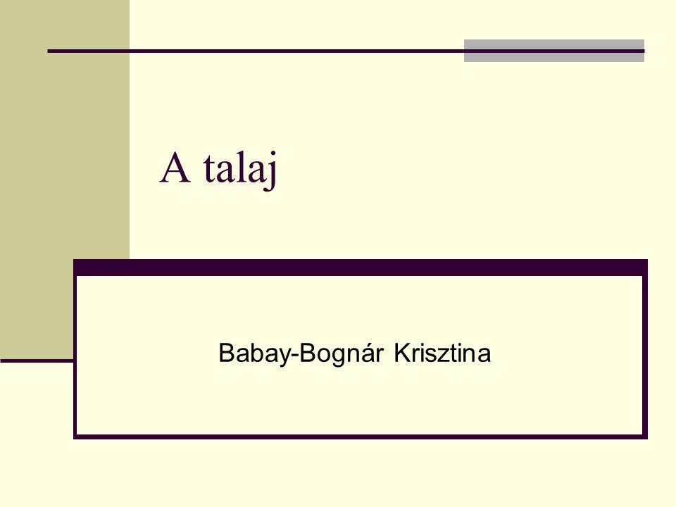 A talaj Babay-Bognár Krisztina