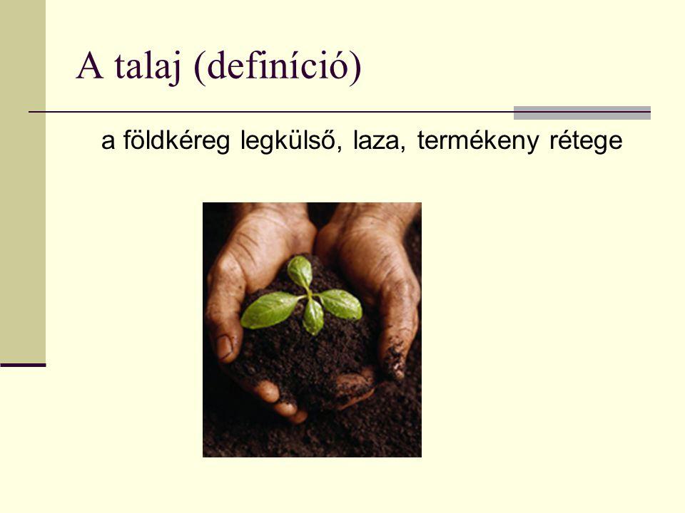 A talaj (definíció) a földkéreg legkülső, laza, termékeny rétege