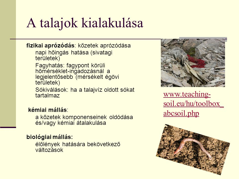 A talajok kialakulása fizikai aprózódás: kőzetek aprózódása napi hőingás hatása (sivatagi területek) Fagyhatás: fagypont körüli hőmérséklet-ingadozásnál a legjelentősebb (mérsékelt égövi területek) Sókiválások: ha a talajvíz oldott sókat tartalmaz kémiai mállás: a kőzetek komponenseinek oldódása és/vagy kémiai átalakulása biológiai mállás: élőlények hatására bekövetkező változások www.teaching- soil.eu/hu/toolbox_ abcsoil.php