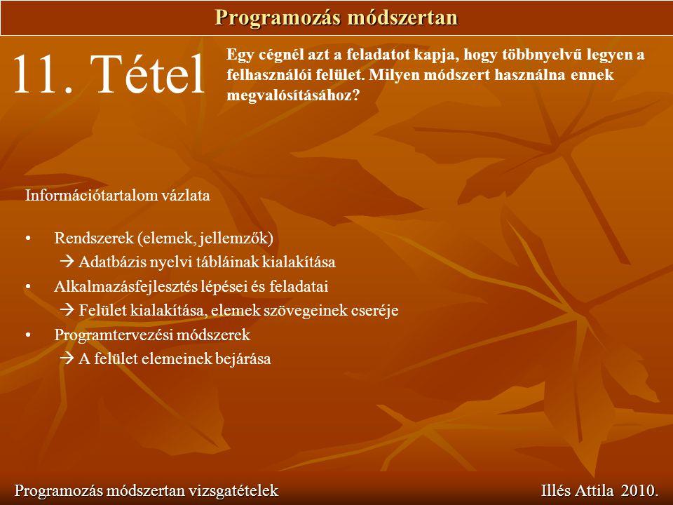 Programozás módszertan Programozás módszertan vizsgatételek Illés Attila 2010. 11. Tétel Egy cégnél azt a feladatot kapja, hogy többnyelvű legyen a fe