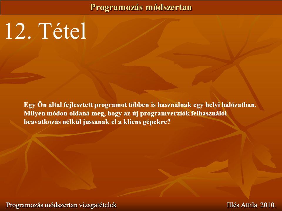 Programozás módszertan Programozás módszertan vizsgatételek Illés Attila 2010. 12. Tétel Egy Ön által fejlesztett programot többen is használnak egy h