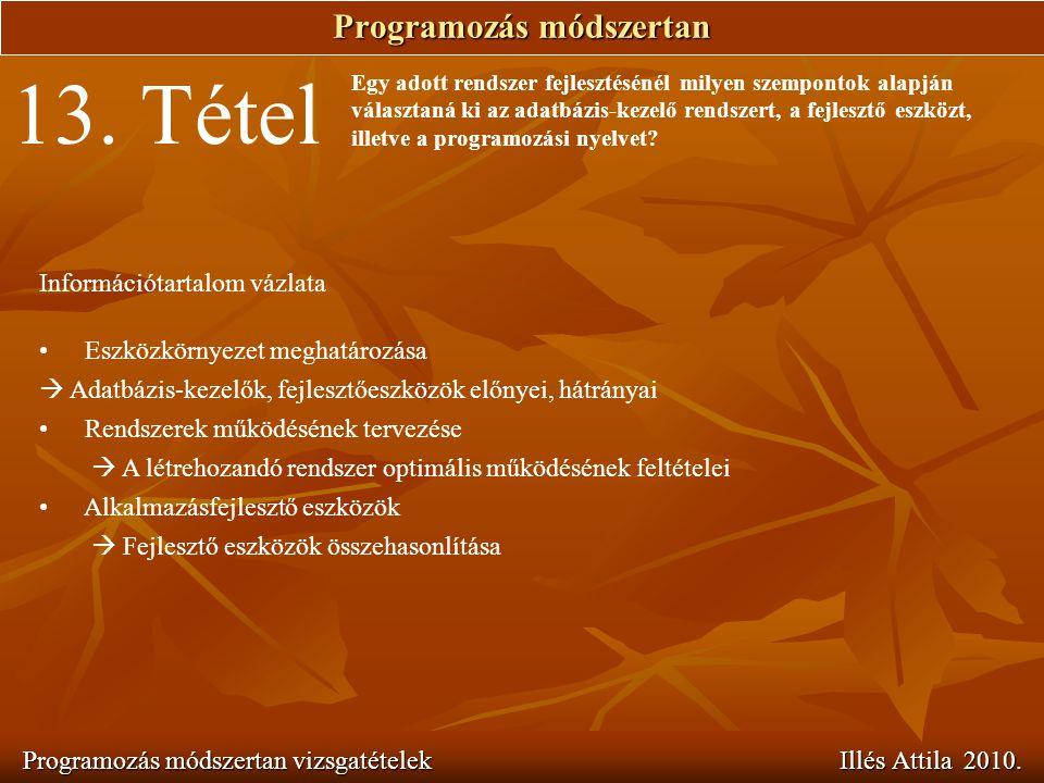 Programozás módszertan Programozás módszertan vizsgatételek Illés Attila 2010. 13. Tétel Egy adott rendszer fejlesztésénél milyen szempontok alapján v