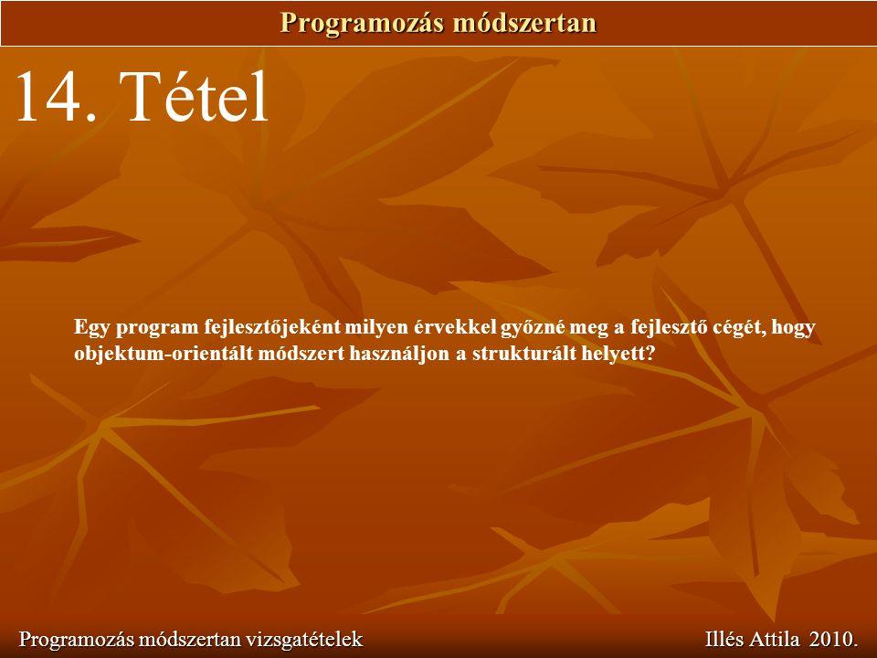 Programozás módszertan Programozás módszertan vizsgatételek Illés Attila 2010. 14. Tétel Egy program fejlesztőjeként milyen érvekkel győzné meg a fejl