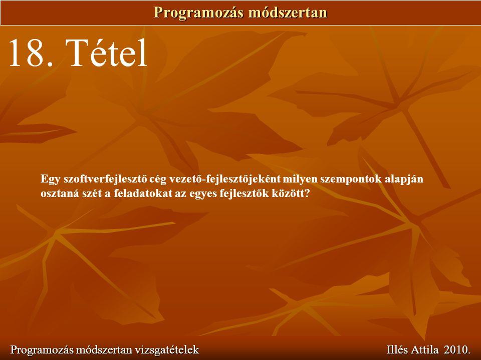Programozás módszertan Programozás módszertan vizsgatételek Illés Attila 2010. 18. Tétel Egy szoftverfejlesztő cég vezető-fejlesztőjeként milyen szemp