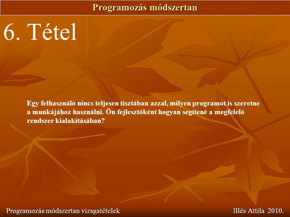 Programozás módszertan Programozás módszertan vizsgatételek Illés Attila 2010. 6. Tétel Egy felhasználó nincs teljesen tisztában azzal, milyen program