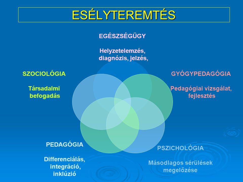 ESÉLYTEREMTÉS EGÉSZSÉGÜGY Helyzetelemzés, diagnózis, jelzés, GYÓGYPEDAGÓGIA Pedagógiai vizsgálat, fejlesztés PSZICHOLÓGIA Másodlagos sérülések megelőz