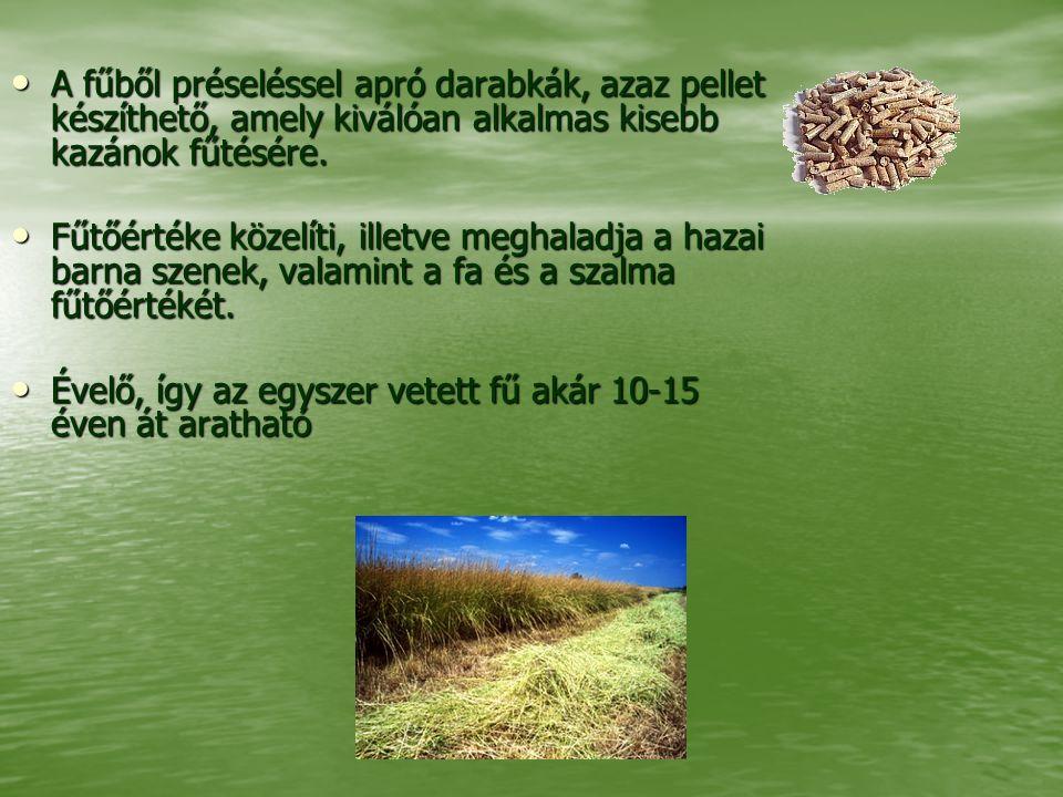 A fűből préseléssel apró darabkák, azaz pellet készíthető, amely kiválóan alkalmas kisebb kazánok fűtésére. A fűből préseléssel apró darabkák, azaz pe