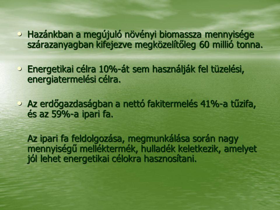 Hazánkban a megújuló növényi biomassza mennyisége szárazanyagban kifejezve megközelítőleg 60 millió tonna. Hazánkban a megújuló növényi biomassza menn