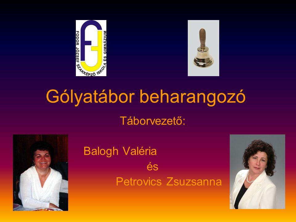 Gólyatábor beharangozó Táborvezető: Balogh Valéria és Petrovics Zsuzsanna