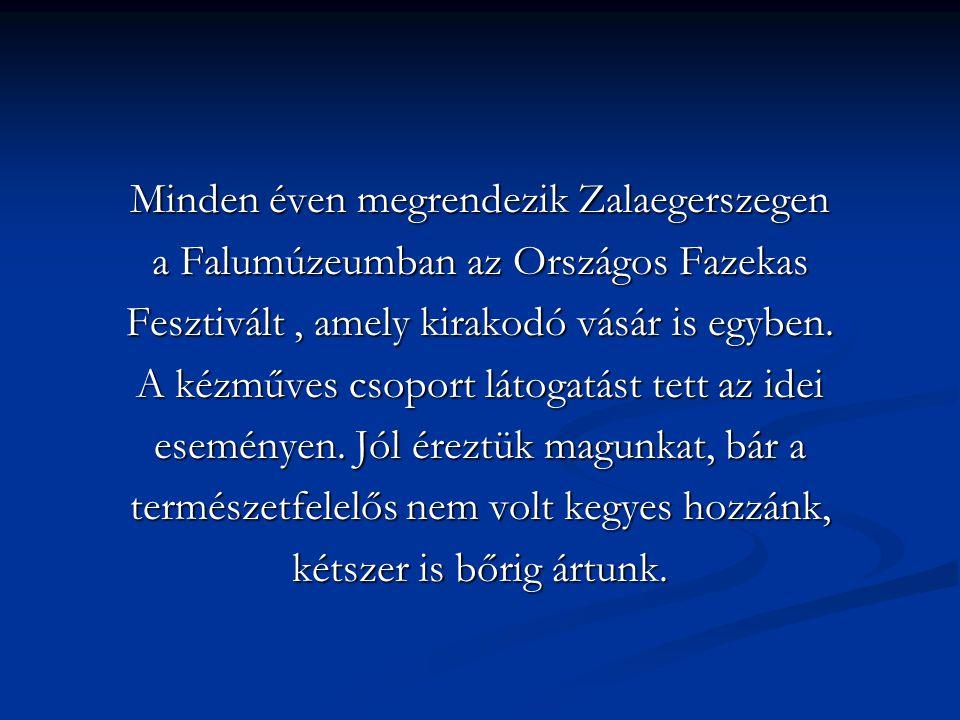 Minden éven megrendezik Zalaegerszegen a Falumúzeumban az Országos Fazekas Fesztivált, amely kirakodó vásár is egyben. A kézműves csoport látogatást t
