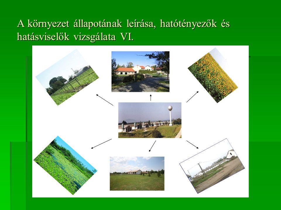 A környezet állapotának leírása, hatótényezők és hatásviselők vizsgálata VI.