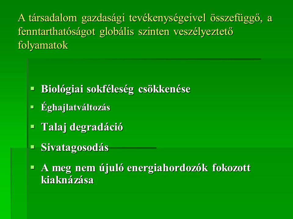 A környezet állapotának leírása, hatótényezők és hatásviselők vizsgálata IV.