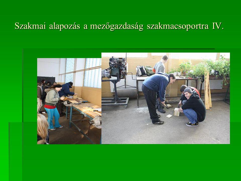 Szakmai alapozás a mezőgazdaság szakmacsoportra IV.