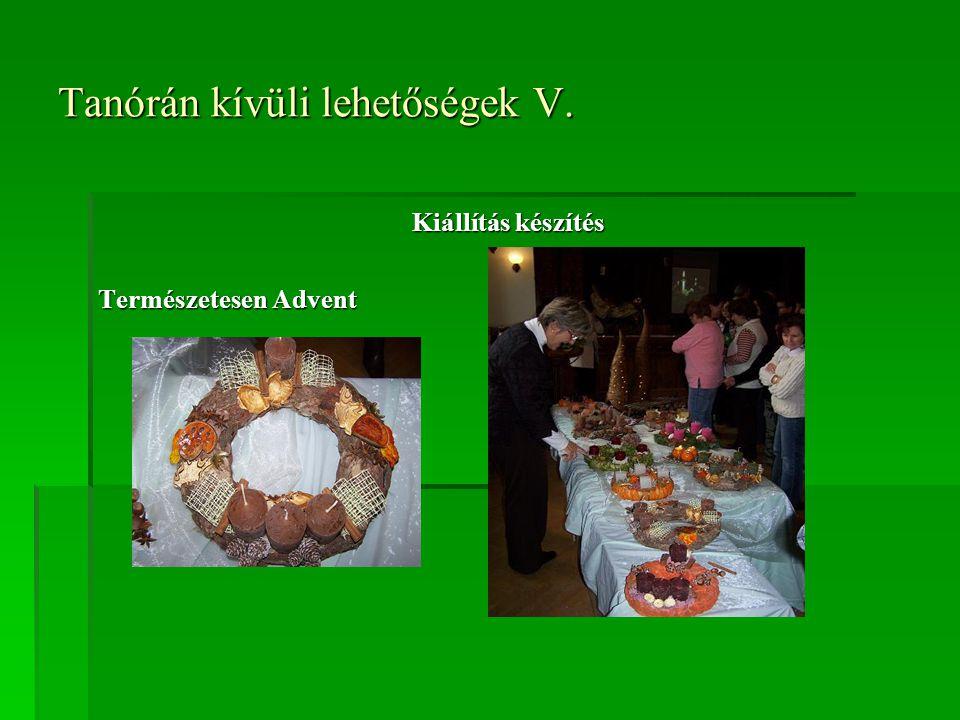 Tanórán kívüli lehetőségek V. Kiállítás készítés Természetesen Advent