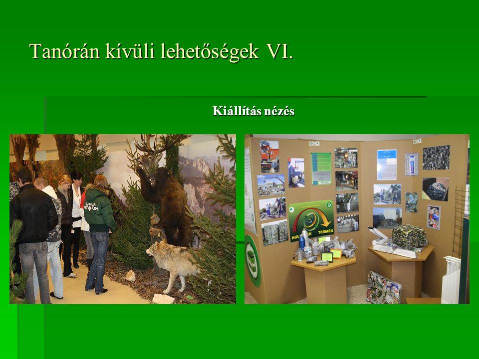 Tanórán kívüli lehetőségek VI. Kiállítás nézés
