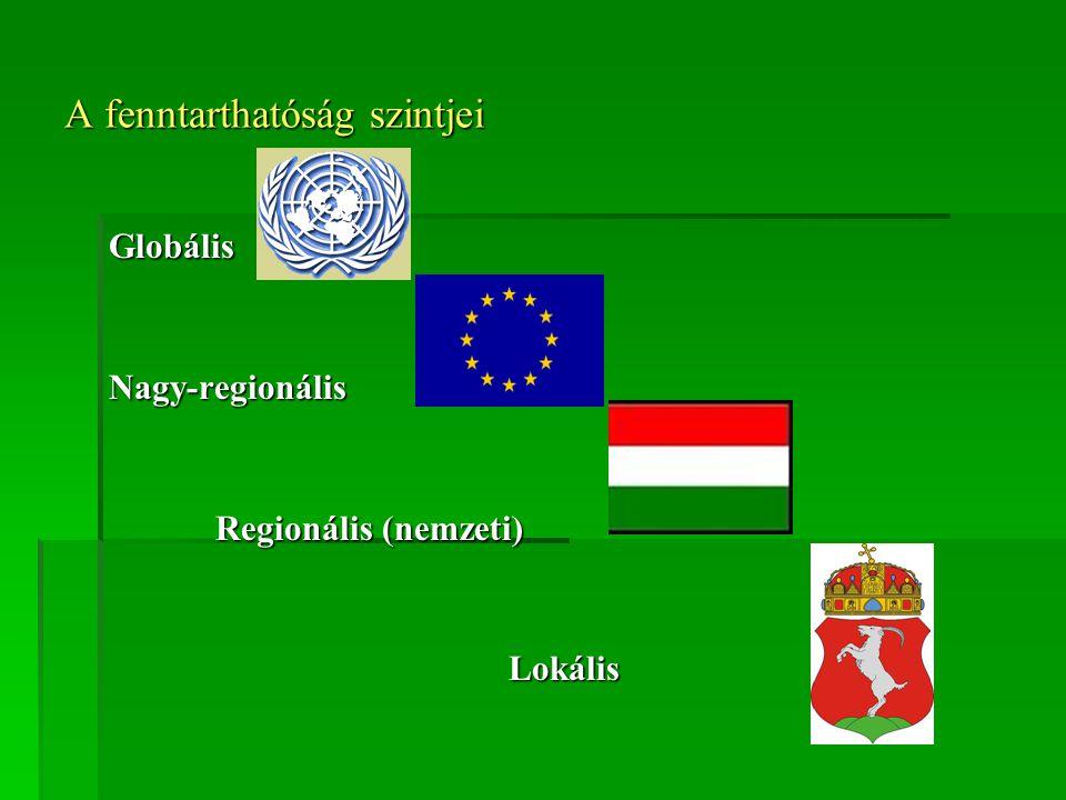 A fenntarthatóság szintjei GlobálisNagy-regionális Regionális (nemzeti) Lokális