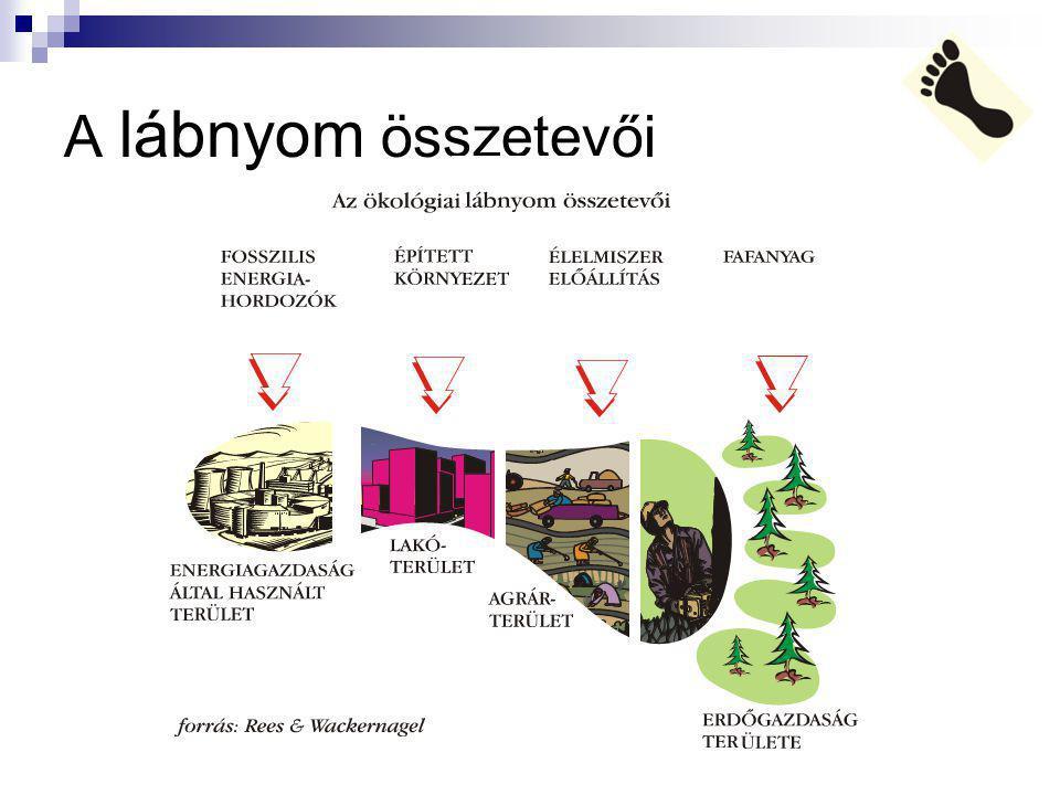Kalkulátorok http://www.glia.hu/okolabnyom/index.php http://tavoktatas.kovet.hu/okolabnyom.html http://www.kothalo.hu/labnyom/ Próbáld ki őket!