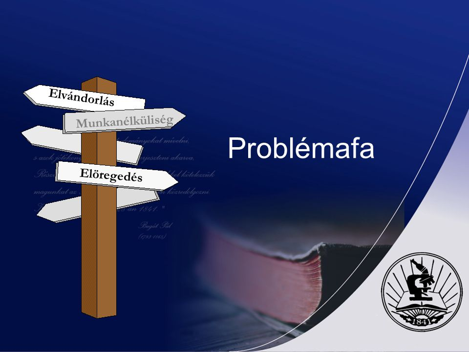 2.2.1.1.Problémaelemzés és a célkitűzések meghatározása Ezek után a logikai kerettervezés negyedik lépése, a beavatkozási logika meghatározása során t