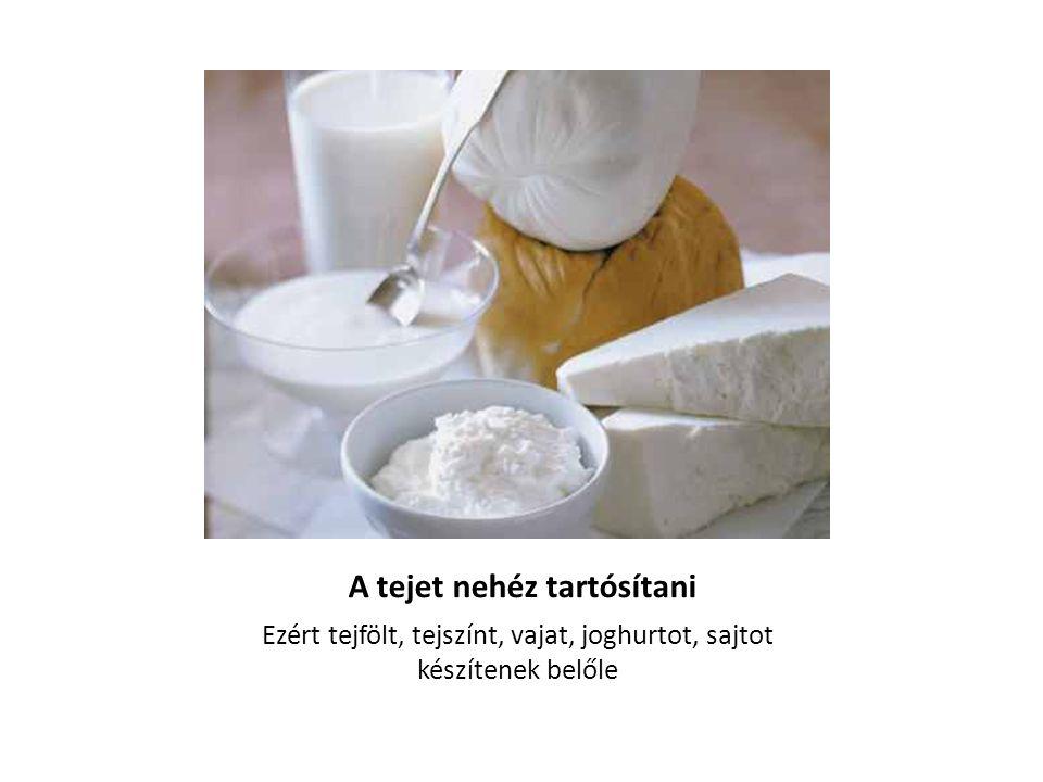 A tejet nehéz tartósítani Ezért tejfölt, tejszínt, vajat, joghurtot, sajtot készítenek belőle