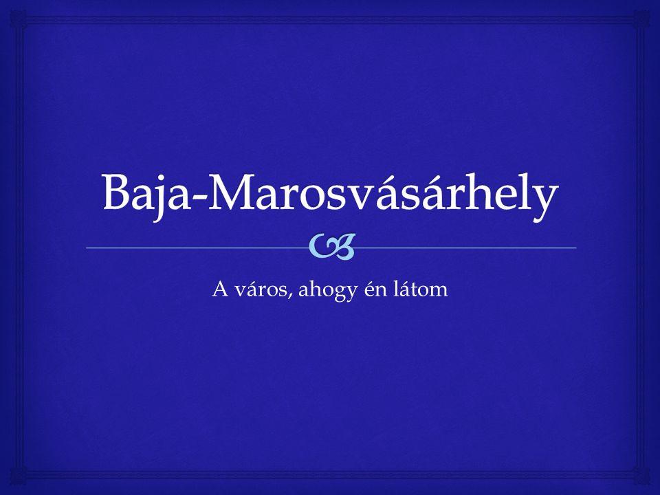   Bolyai Farkas (Bólya, 1775.február 9. – Marosvásárhely, 1856.
