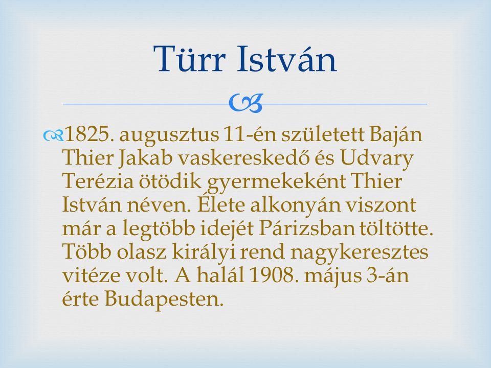   1825. augusztus 11-én született Baján Thier Jakab vaskereskedő és Udvary Terézia ötödik gyermekeként Thier István néven. Élete alkonyán viszont má