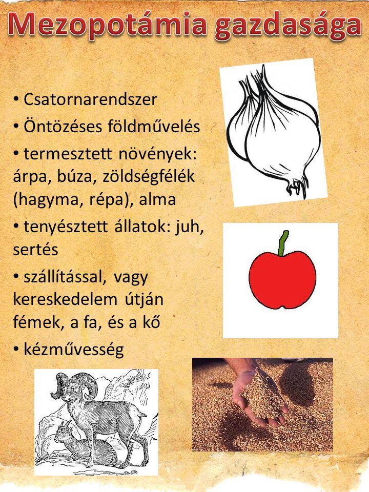 Csatornarendszer Öntözéses földművelés termesztett növények: árpa, búza, zöldségfélék (hagyma, répa), alma tenyésztett állatok: juh, sertés szállításs