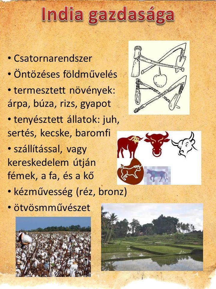Csatornarendszer Öntözéses földművelés termesztett növények: árpa, búza, rizs, gyapot tenyésztett állatok: juh, sertés, kecske, baromfi szállítással, vagy kereskedelem útján fémek, a fa, és a kő kézművesség (réz, bronz) ötvösmművészet