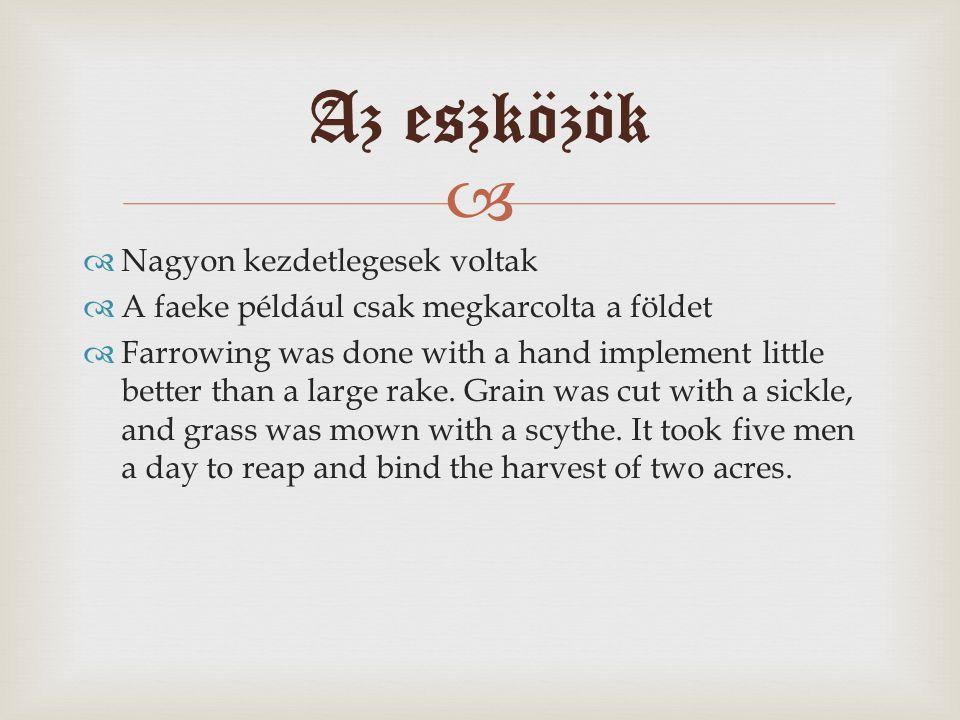   Nagyon kezdetlegesek voltak  A faeke például csak megkarcolta a földet  Farrowing was done with a hand implement little better than a large rake