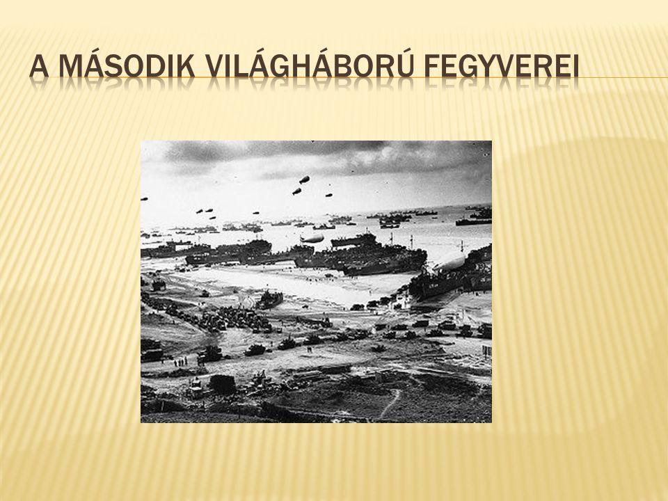 Kaliber: 149mm Súly: 6,25kg Hossz: 1000mm Hatótávolság: 60m 1942-ben a lipcsei HASAG cég a saját szakállára fejlesztésekbe kezdett Dr.