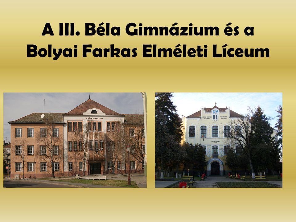 A III. Béla Gimnázium és a Bolyai Farkas Elméleti Líceum
