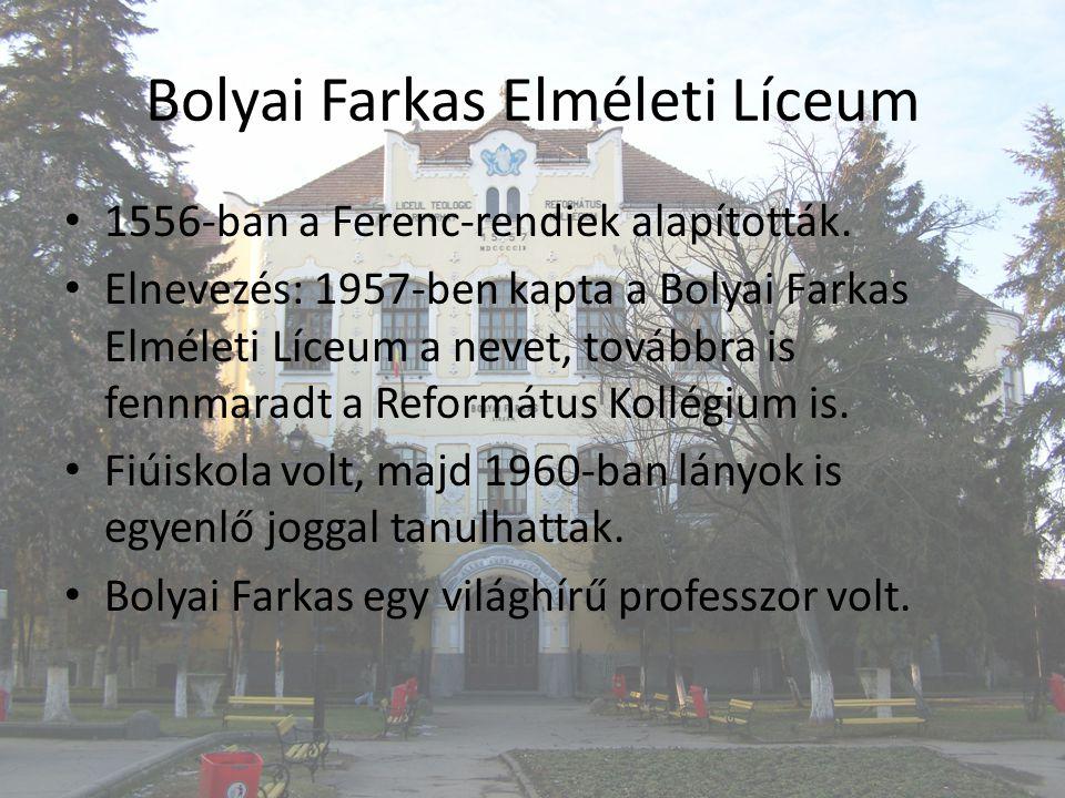 Bolyai Farkas Elméleti Líceum 1556-ban a Ferenc-rendiek alapították.