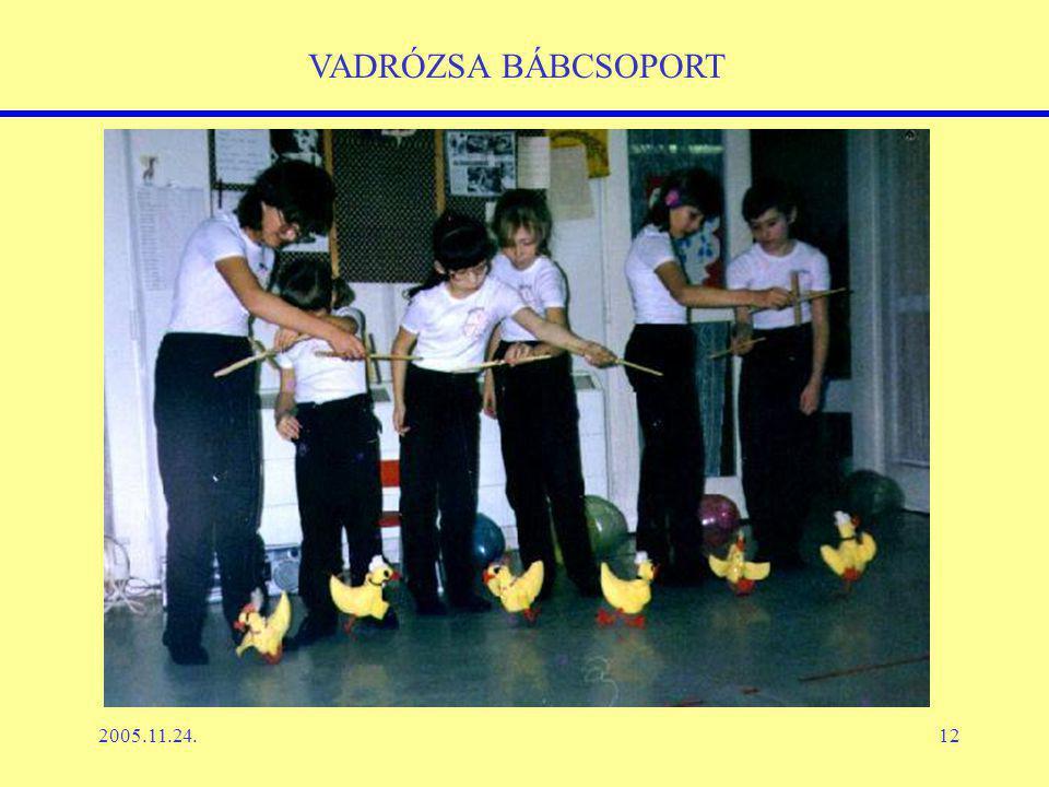 2005.11.24.12 VADRÓZSA BÁBCSOPORT