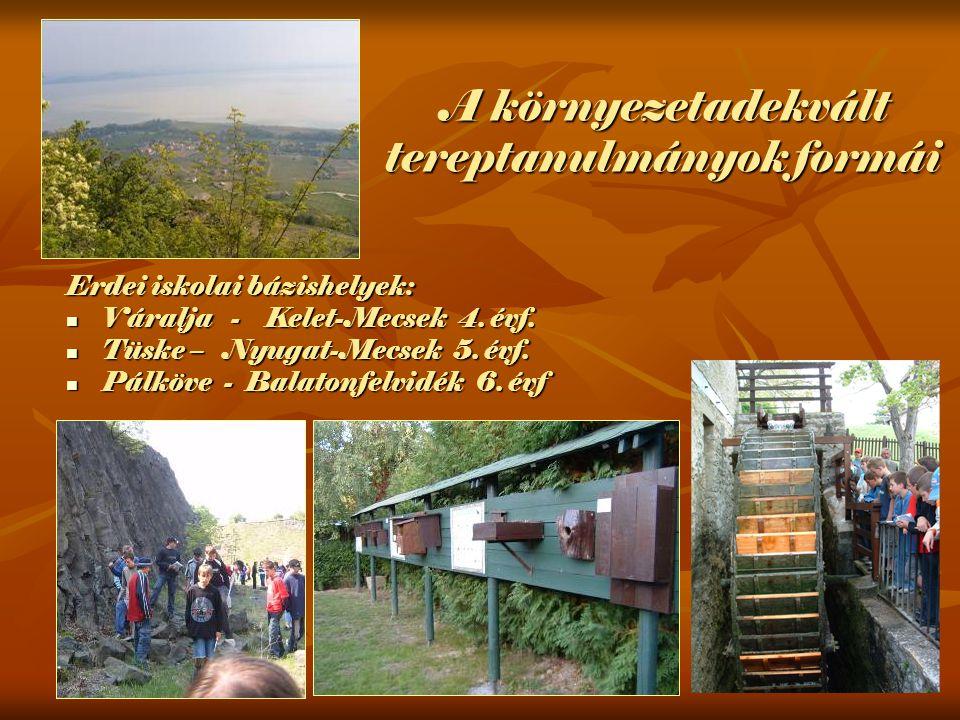 Erdei iskolai bázishelyek: Váralja - Kelet-Mecsek 4.