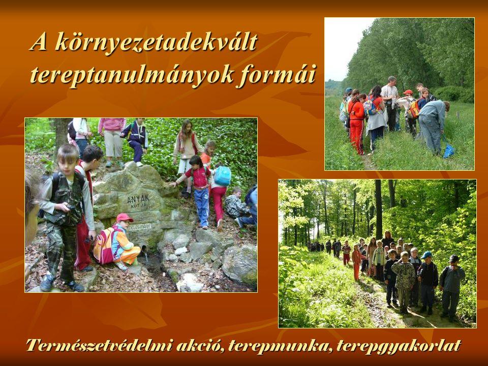Természetvédelmi akció, terepmunka, terepgyakorlat A környezetadekvált tereptanulmányok formái