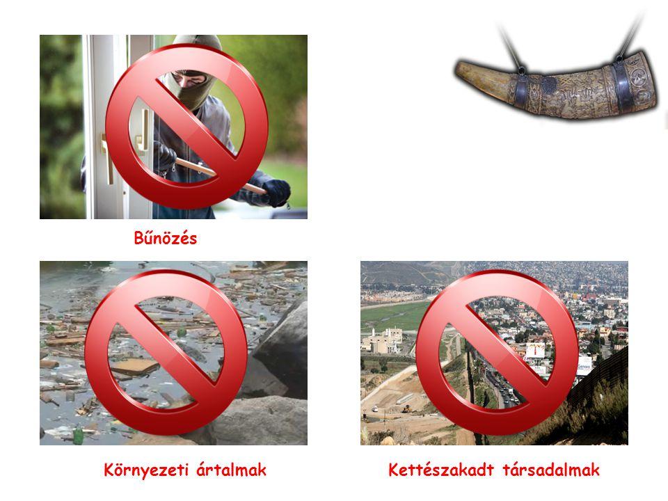 Környezeti ártalmak Kettészakadt társadalmak Bűnözés