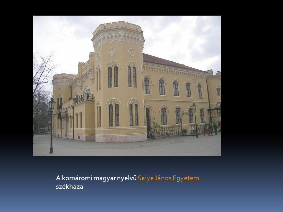 A komáromi magyar nyelvű Selye János Egyetem székházaSelye János Egyetem