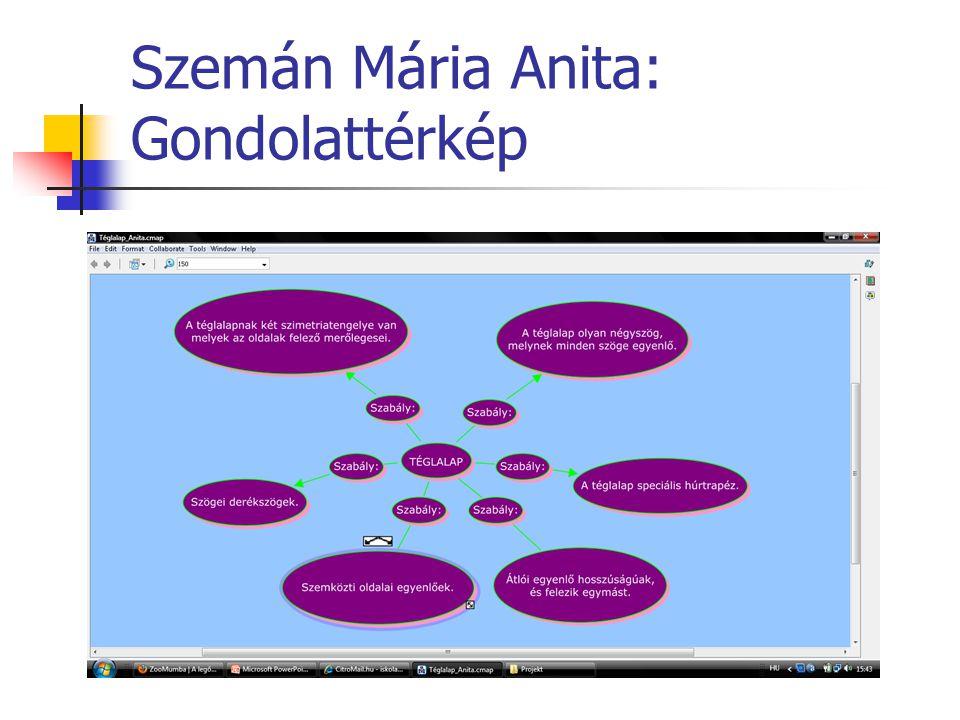 Szemán Mária Anita: Gondolattérkép