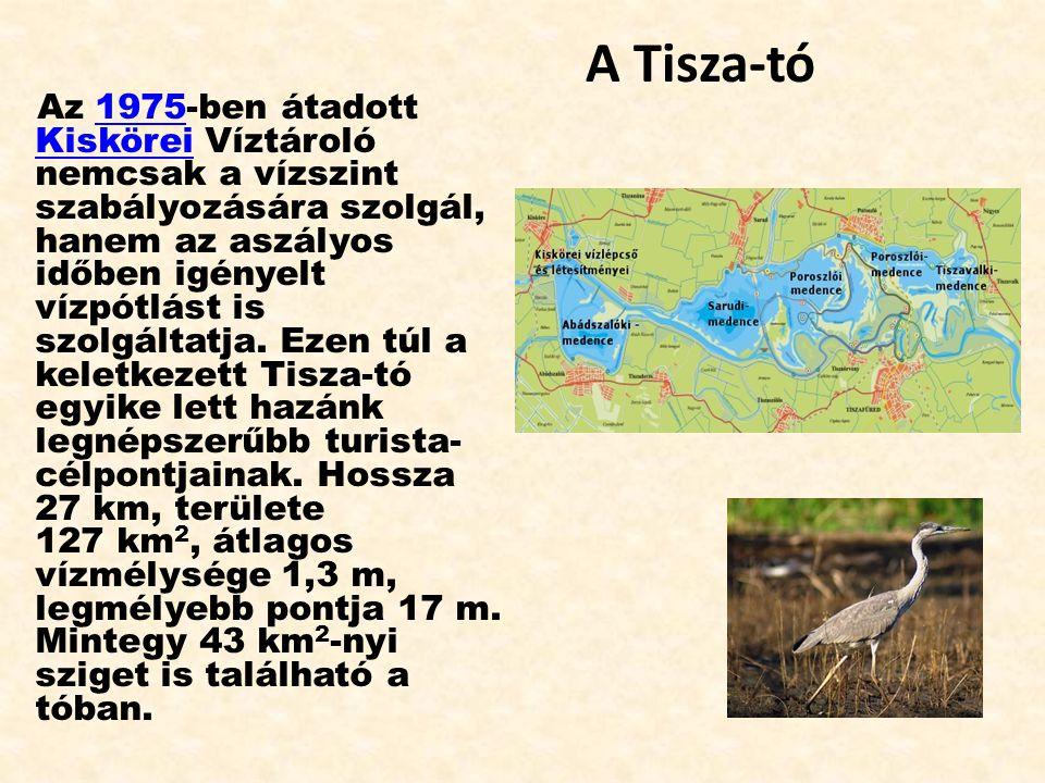 A Tisza-tó Az 1975-ben átadott Kiskörei Víztároló nemcsak a vízszint szabályozására szolgál, hanem az aszályos időben igényelt vízpótlást is szolgálta