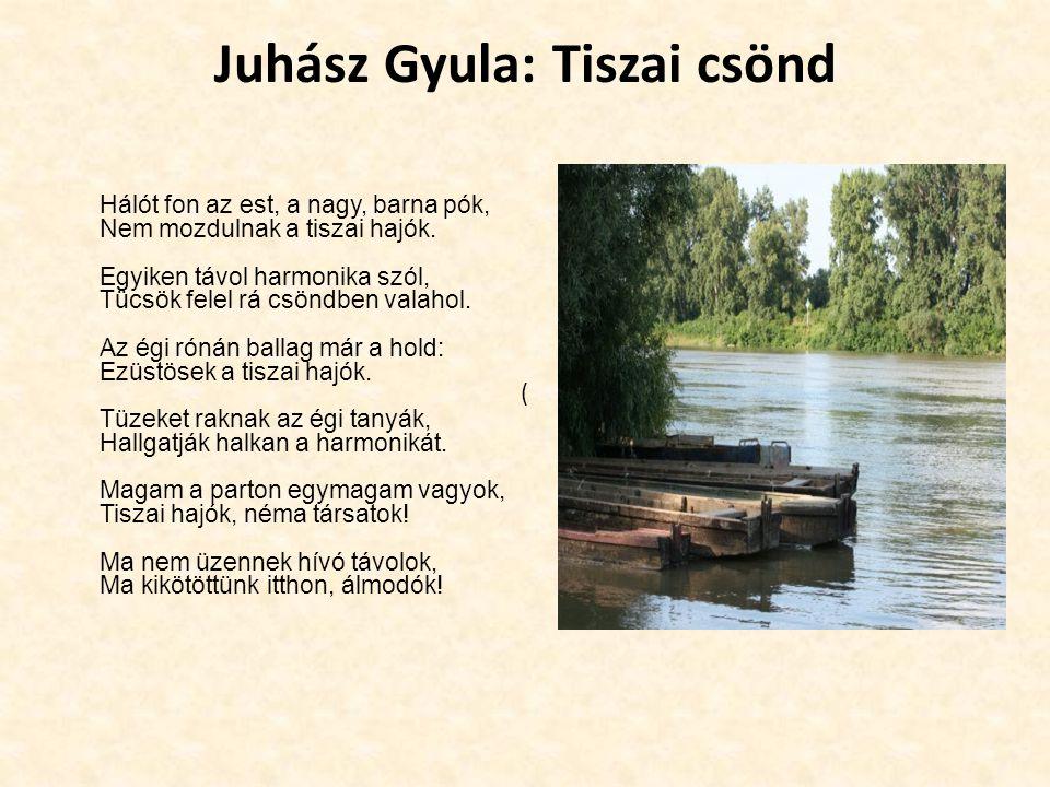 Juhász Gyula: Tiszai csönd Hálót fon az est, a nagy, barna pók, Nem mozdulnak a tiszai hajók. Egyiken távol harmonika szól, Tücsök felel rá csöndben v