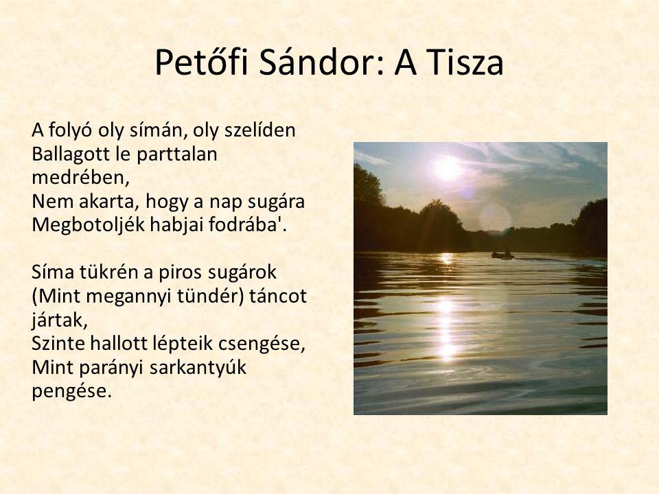 Petőfi Sándor: A Tisza A folyó oly símán, oly szelíden Ballagott le parttalan medrében, Nem akarta, hogy a nap sugára Megbotoljék habjai fodrába'. Sím