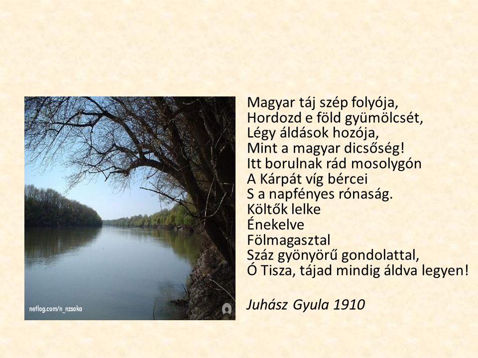 Magyar táj szép folyója, Hordozd e föld gyümölcsét, Légy áldások hozója, Mint a magyar dicsőség! Itt borulnak rád mosolygón A Kárpát víg bércei S a na
