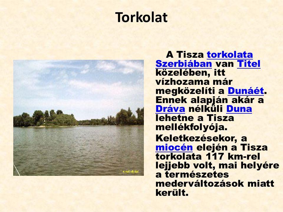 Torkolat A Tisza torkolata Szerbiában van Titel közelében, itt vízhozama már megközelíti a Dunáét. Ennek alapján akár a Dráva nélküli Duna lehetne a T