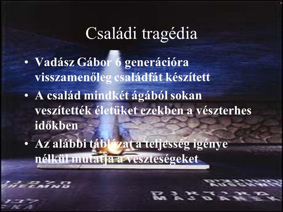 Családi tragédia Vadász Gábor 6 generációra visszamenőleg családfát készített A család mindkét ágából sokan veszítették életüket ezekben a vészterhes időkben Az alábbi táblázat a teljesség igénye nélkül mutatja a veszteségeket