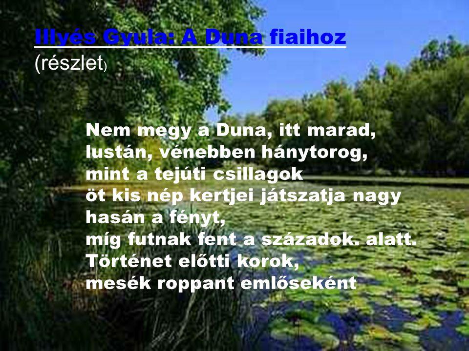 Illyés Gyula: A Duna fiaihoz Illyés Gyula: A Duna fiaihoz (részlet ) Nem megy a Duna, itt marad, lustán, vénebben hánytorog, mint a tejúti csillagok ö